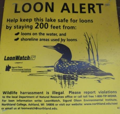 loon-alert