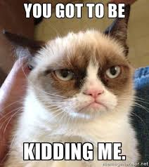kidding me grumpy cat