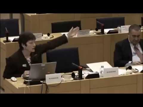 Sabine McNeill EU committee