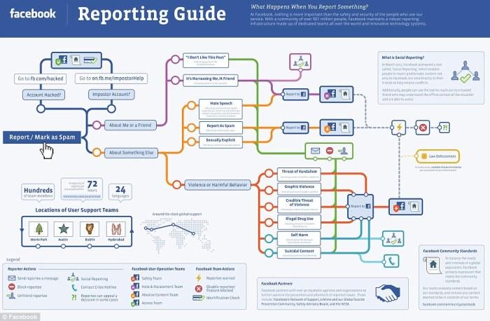 Facebook-reporting-4