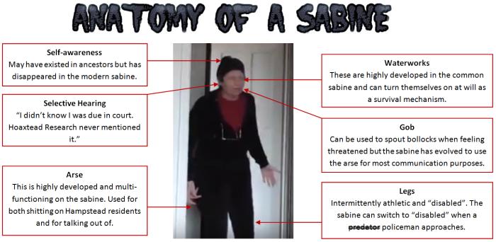 Sabine-anatomy