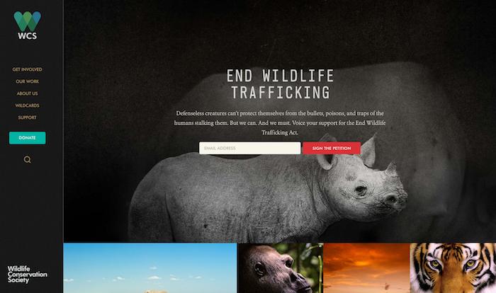 TKF-Wildlife Conservation Society 2016-06-27