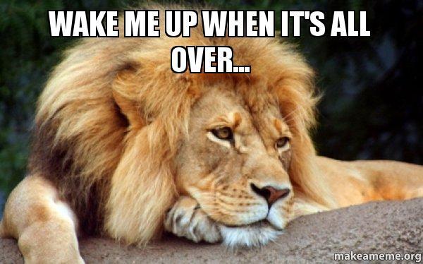 wake-me-up-meme