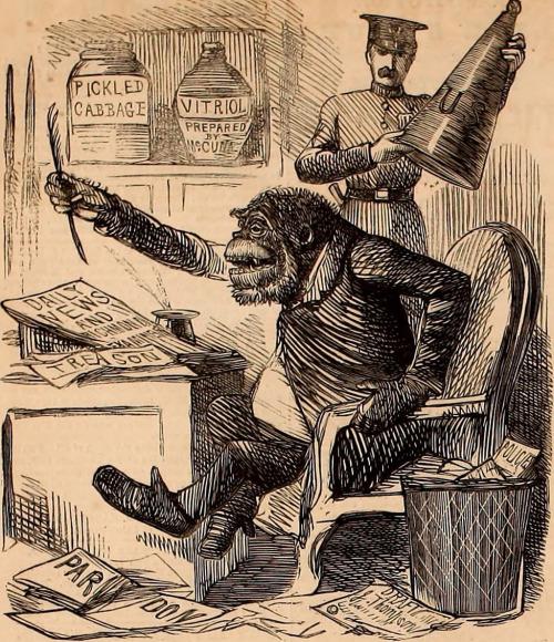 monkey-with-typewriter