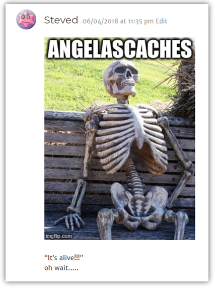 SteveD AngelasCaches