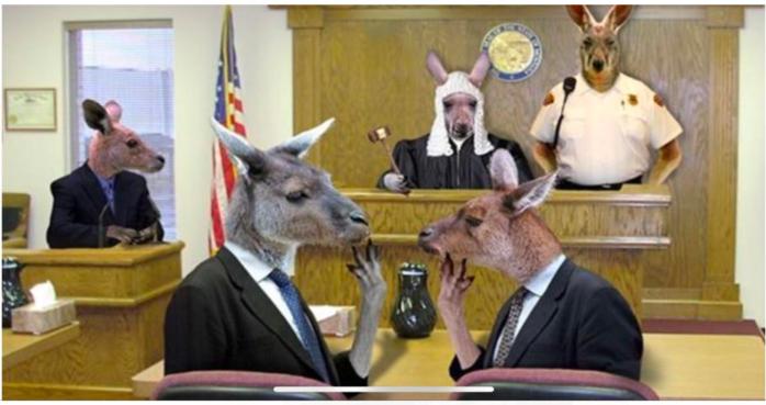 kangaroo court 1